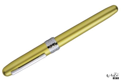 Platinum Plaisir Fountain Pen